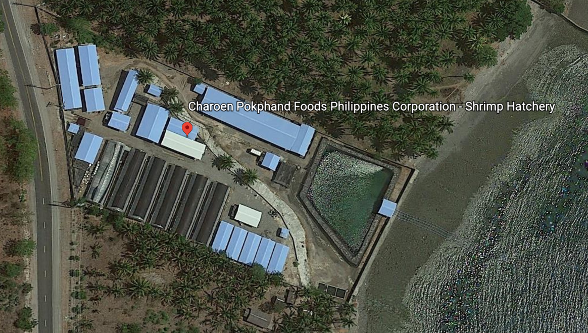 CP Phils hatchery